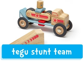 Tegu stunt team