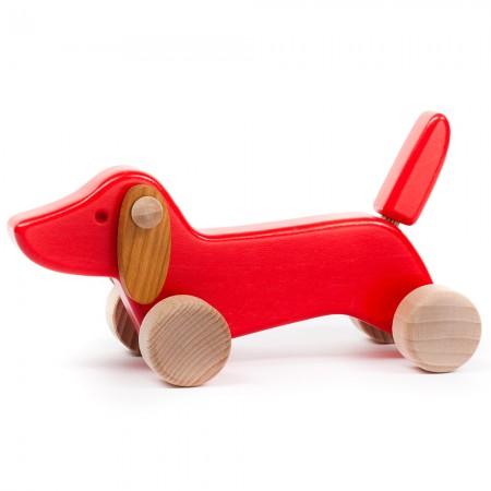 Bajo Red Dachshund Puppy