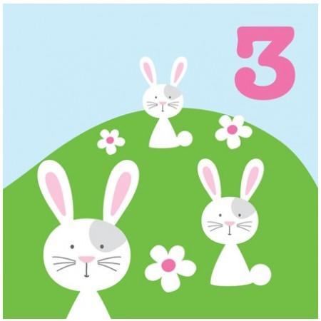 Toby Tiger 3rd Birthday Bunny Card