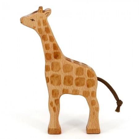 Eric & Albert's Giraffe Calf