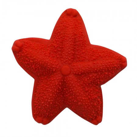 Lanco Red Sea Star Teether