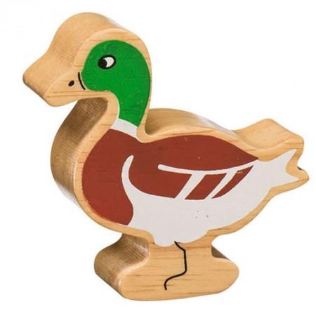 Lanka Kade Brown Male Duck