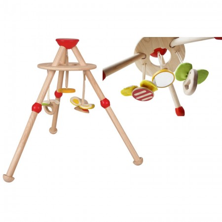 Plan Toys Activity Baby Gym