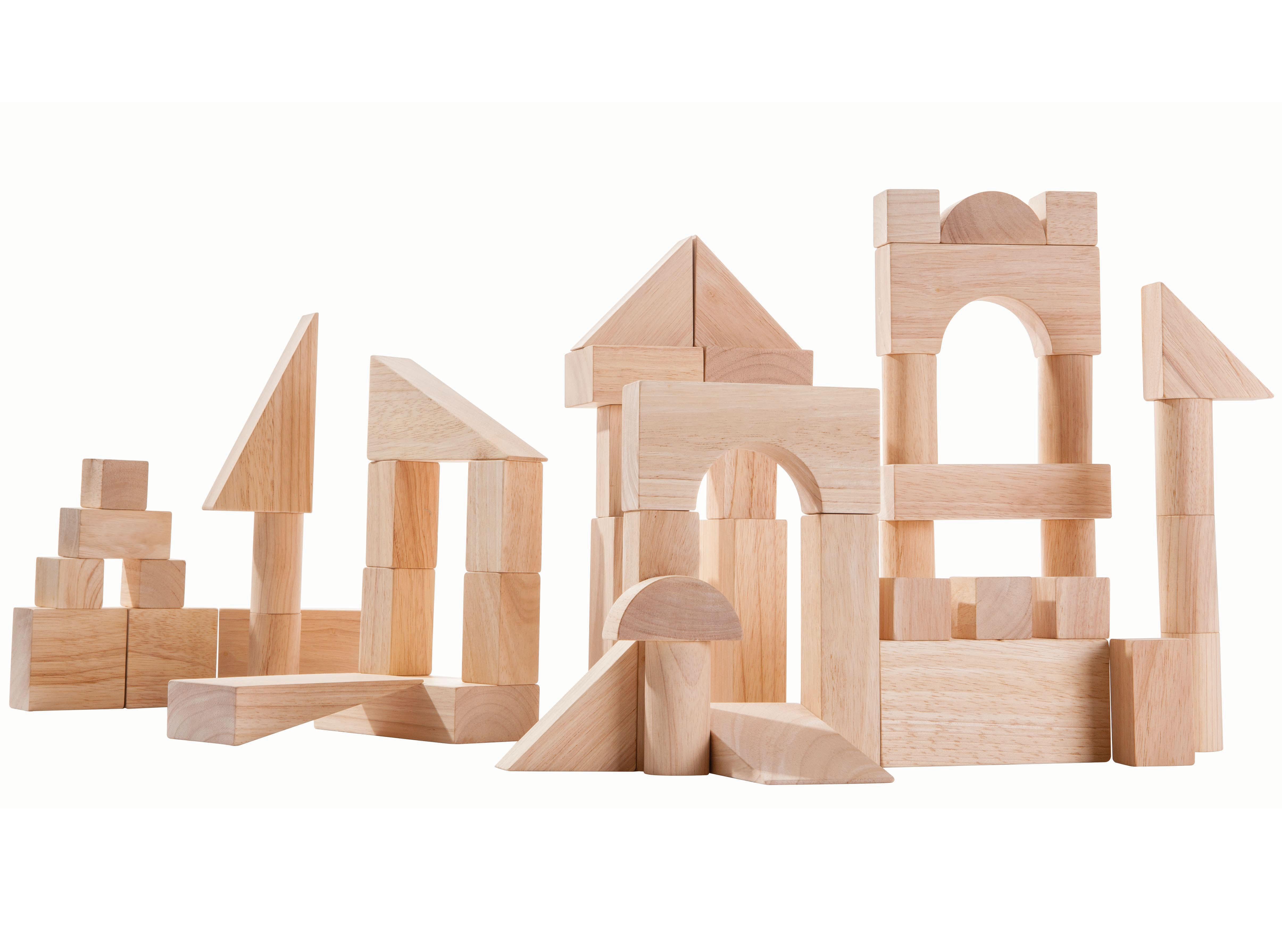 Plan Toys 50 Unit Blocks