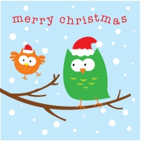 Babipur Owls Merry Christmas Card