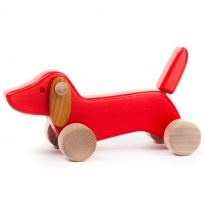 Bajo Red Dachshund Puppy
