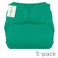bumGenius Elemental Nappy x 5