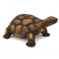 Green Rubber Toys Tortoise