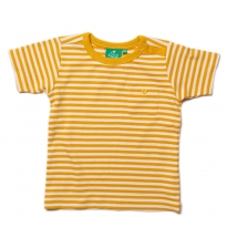 LGR Gold Stripe T-Shirt