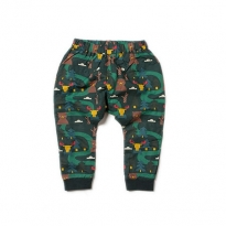 LGR Nordic Forest Lined Jelly Bean Joggers