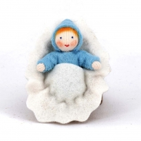 Ambrosius Blue Baby In Walnut