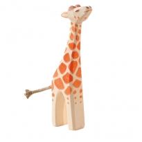 Ostheimer Small Giraffe, Head High