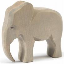 Ostheimer Elephant Male