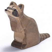 Ostheimer Raccoon Sitting