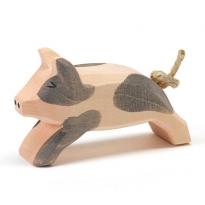 Ostheimer Spotted Piglet Running