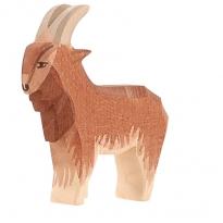 Ostheimer Male Goat