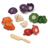Plan Toys 5 Colours Veggie Set