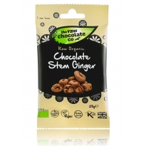 Chocolate Ginger Pouch 125g - Raw Chocolate Company