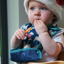Pop-in Stage 2 Winter Woodland Bibs