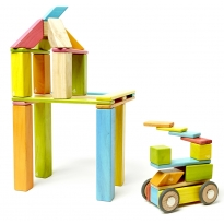 Tegu Tints 42 Piece Set