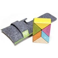 Tegu Tints 6 Piece Pocket Pouch