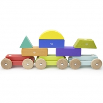 Tegu Rainbow Shape Train