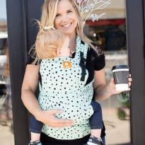 Tula Half Buckle Baby Carrier - Mint Chip