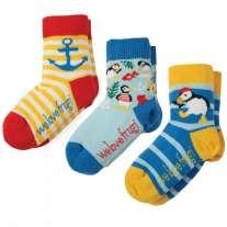 Frugi Puffin Little Socks x3