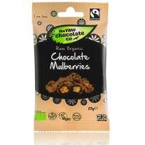 Chocolate Mulberries Snack Pack 28g - Raw Chocolate Company