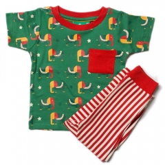 LGR Starry Eyed Elephant Play  T-shirt & Bottoms
