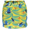 Pop-in Parrot Print Cover