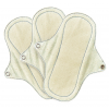 Eco Femme Organic Pantyliner With PUL x3