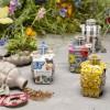 Kabloom Birds, Bees & Butterflies Gift Box