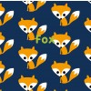 Maxomorra Fox Knickers & Vest